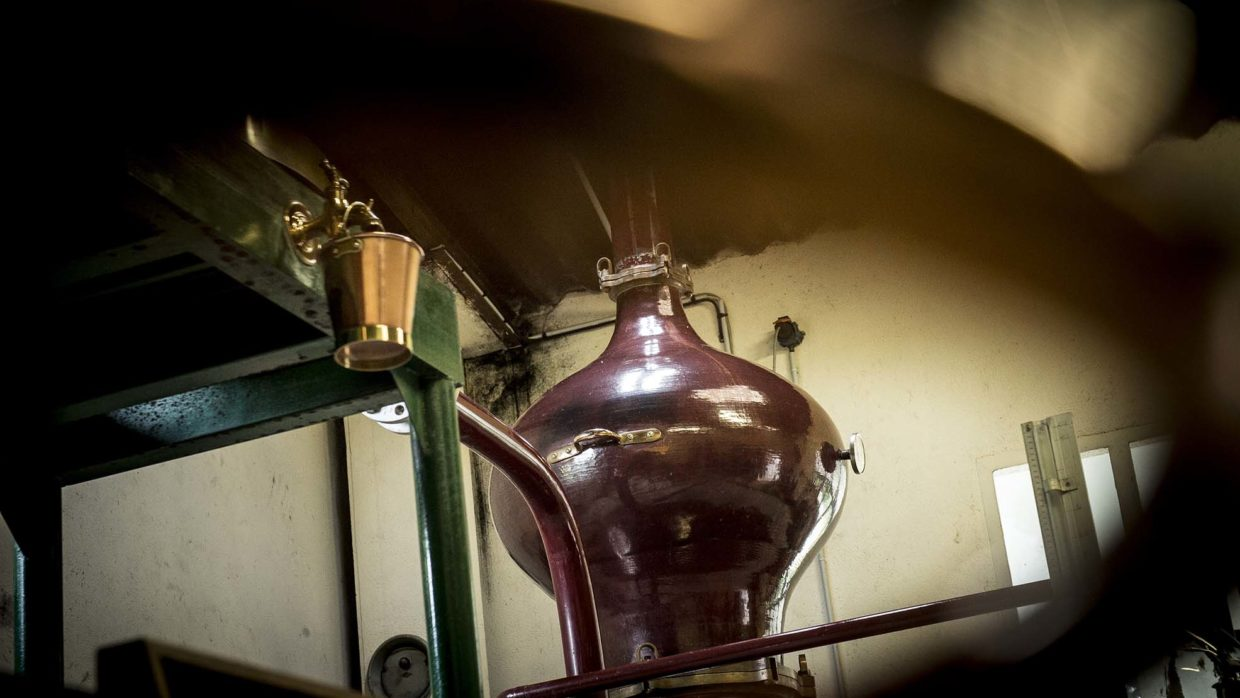 Cognac Distillation