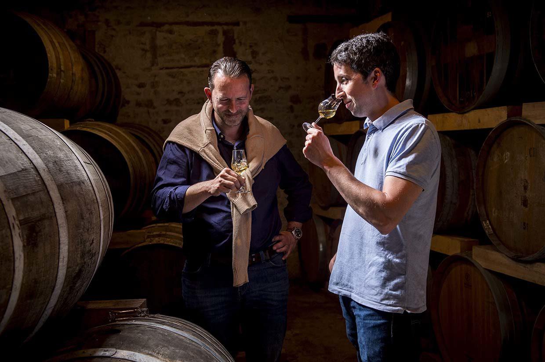How to taste Cognac